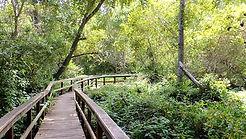 San Simeon Hiking Trails