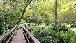 San Simeon Trail