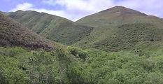 Reservoir Flats Trail, Los Osos