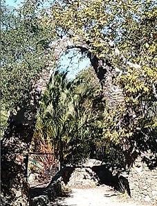 Poly CAnyon Design Village Trail, San Luis Obispo