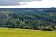 Plateau_de_Millevaches,_près_de_Saint-Se