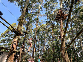 Ropes Course.jpg