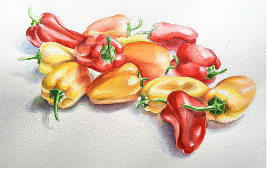 peppers_study1.jpg