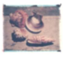 shells_group.jpg