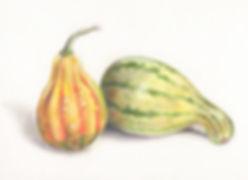 2_gourds.jpg
