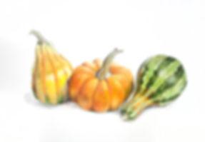 3_gourds.jpg