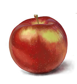 Empire_Apple.jpg