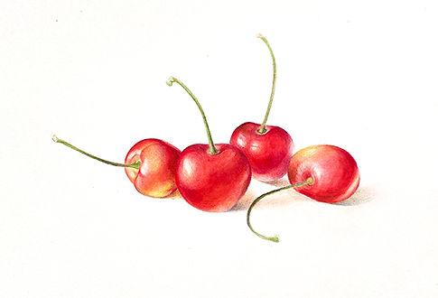 rainier_cherries_1.jpg