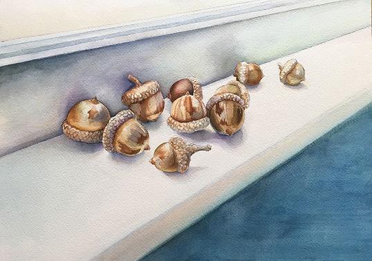 acorns.jpg