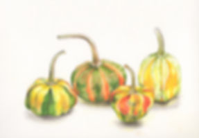 gourds_group.jpg