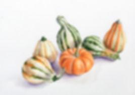 gourds_still_life1.jpg