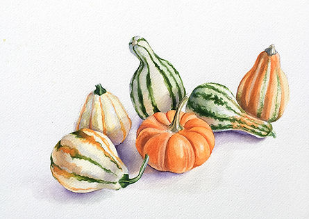 gourds_still_life1.jpg