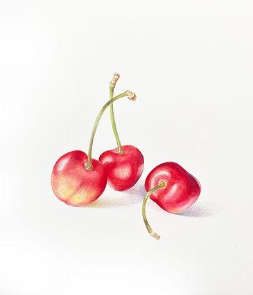 rainier_cherries_2.jpg