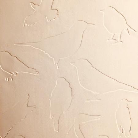 Mes oiseaux au Musée d'art et d'histoire de Neuchâtel