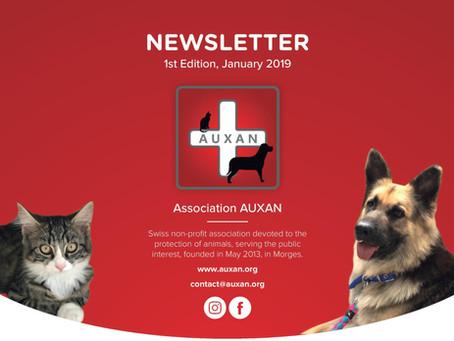 (English) NEWSLETTER AUXAN - Edition 1, Jan 2019