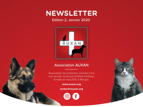 (Français) NEWSLETTER AUXAN, Edition 2, Jan 2020