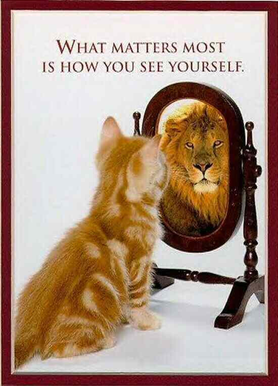 self confident a picture says a thousand words is this you?