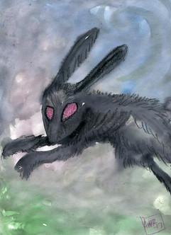 the black rabbit.jpg