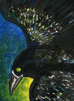 raven paint.jpg