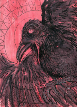 crow5.jpg