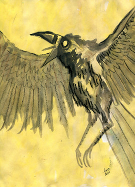 crow yellow.jpg