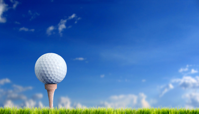 Attractive Golf Ball Anatomy Ensign