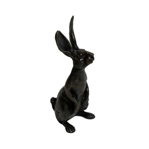 Hare – Tracey Whinray