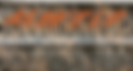 Camo with Decal.png