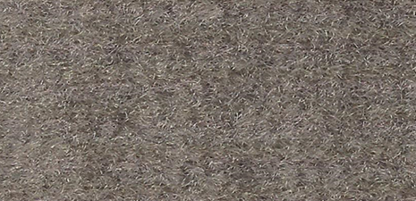 Tan Carpet