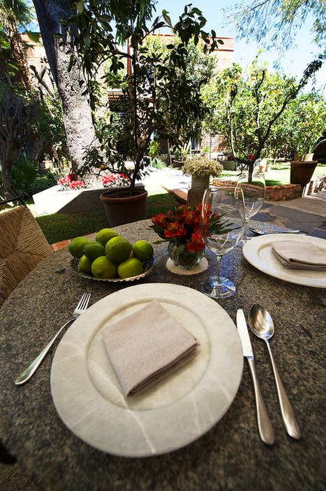 Mesa y Jardín.jpg