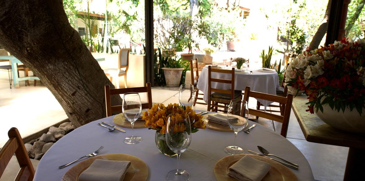 Mesa y jardin atrás.jpg