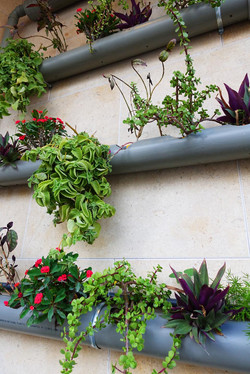Simple hanging gardens