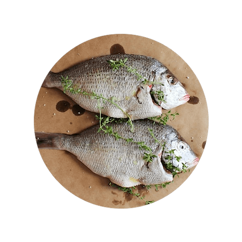 Fresh Porgy