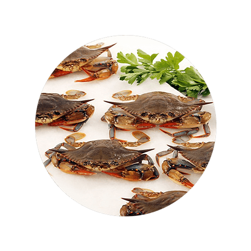 Frozen Softshell Crabs