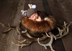 Baby Photos Deer Antlers
