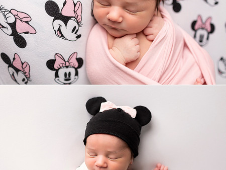 Minnie Mouse / Disney Fan Newborn Photos
