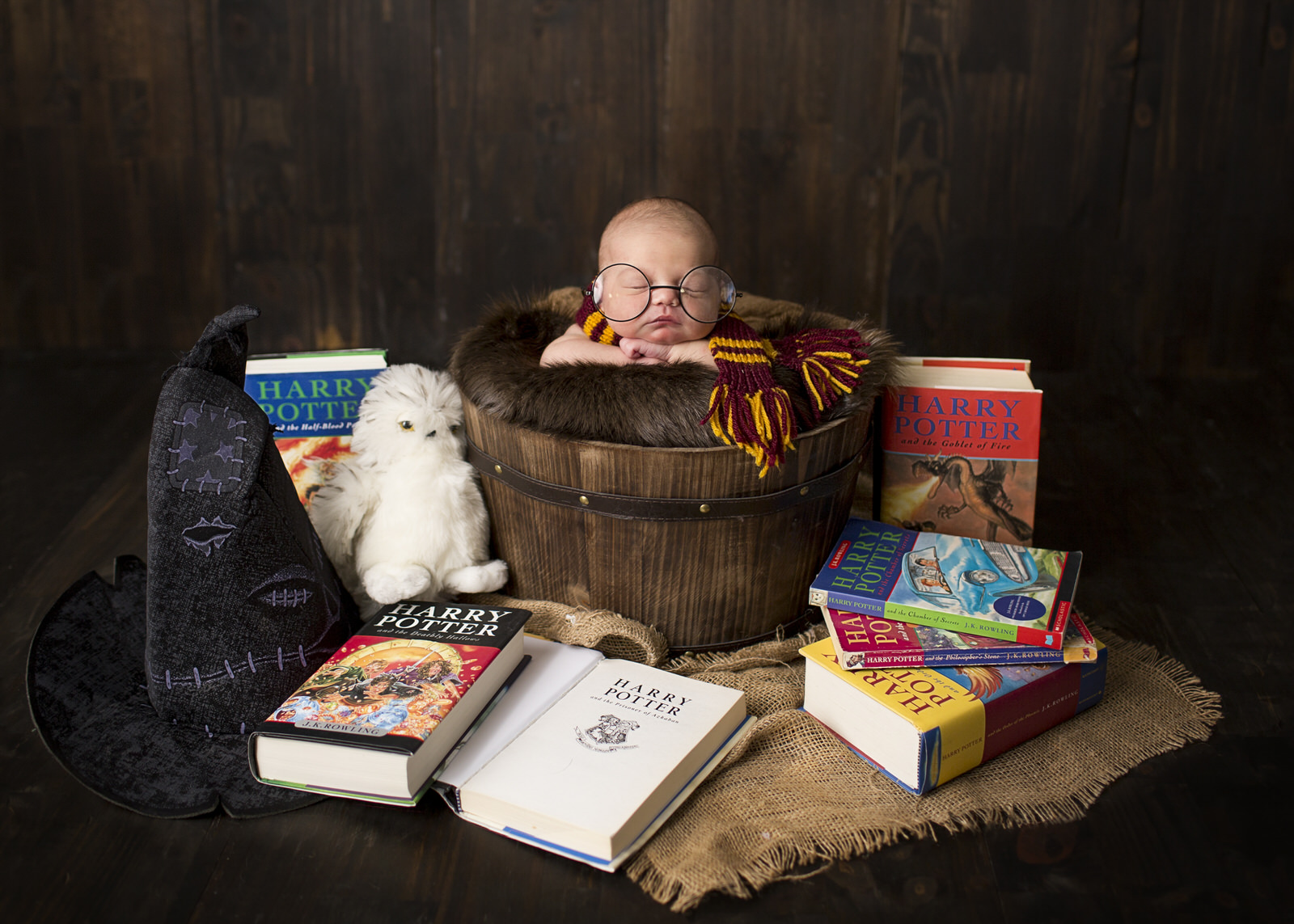Harry Potter Newborn Photos
