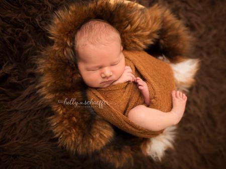 Newborn Photography Regina