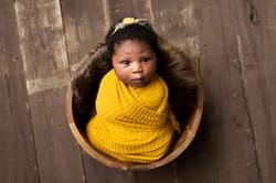 mustard yellow newborn