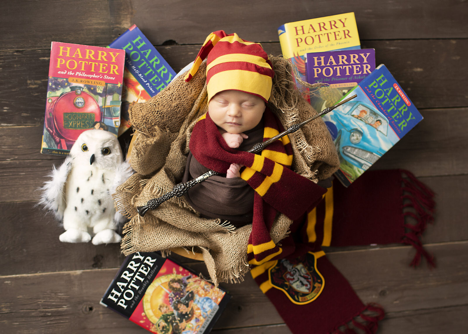 Harry Potter Newborn Photos Regina