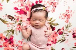 Floral newborn photos regina