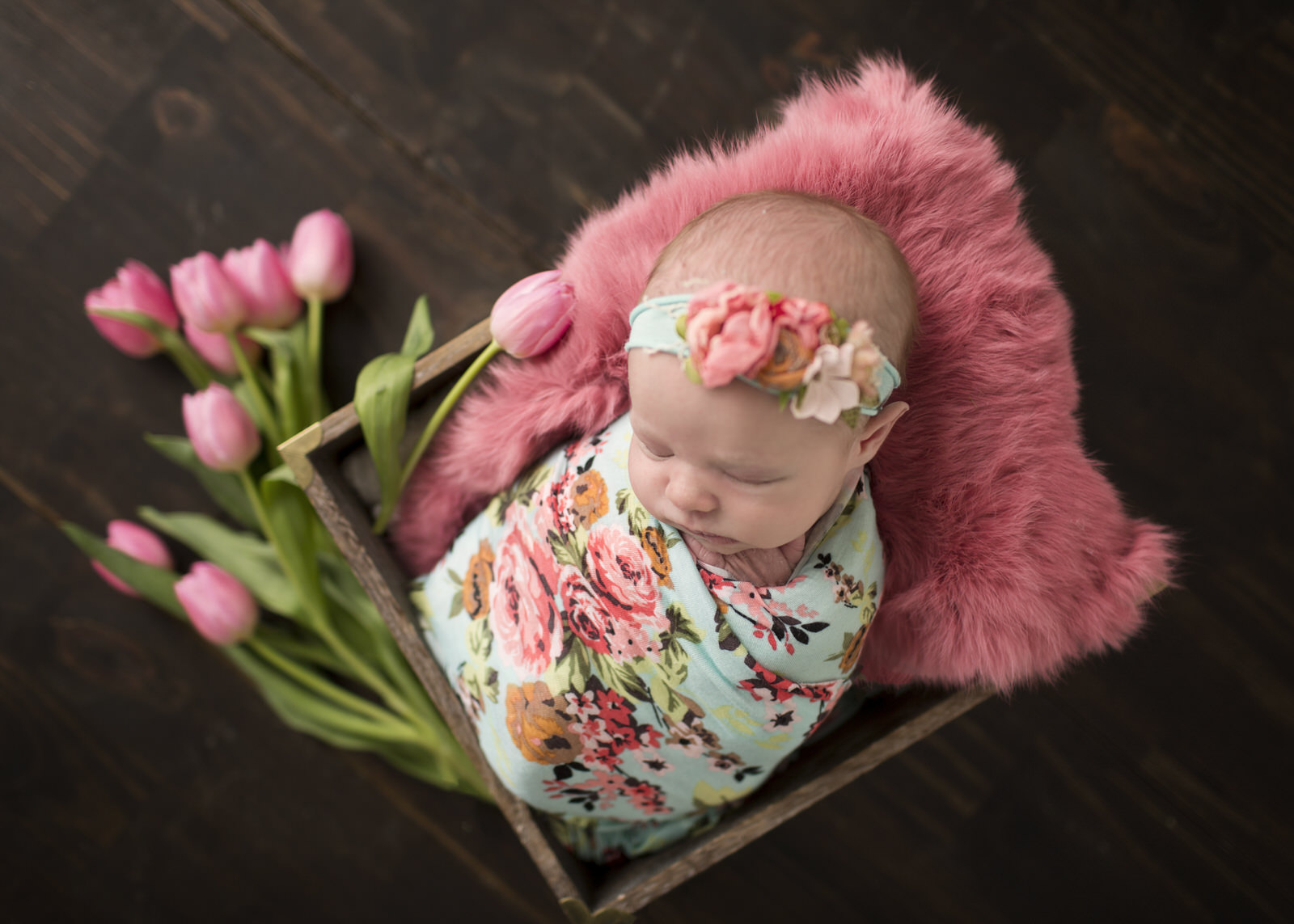 Newborn Photographer in Regina