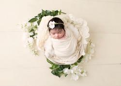 Baby Ariha_33