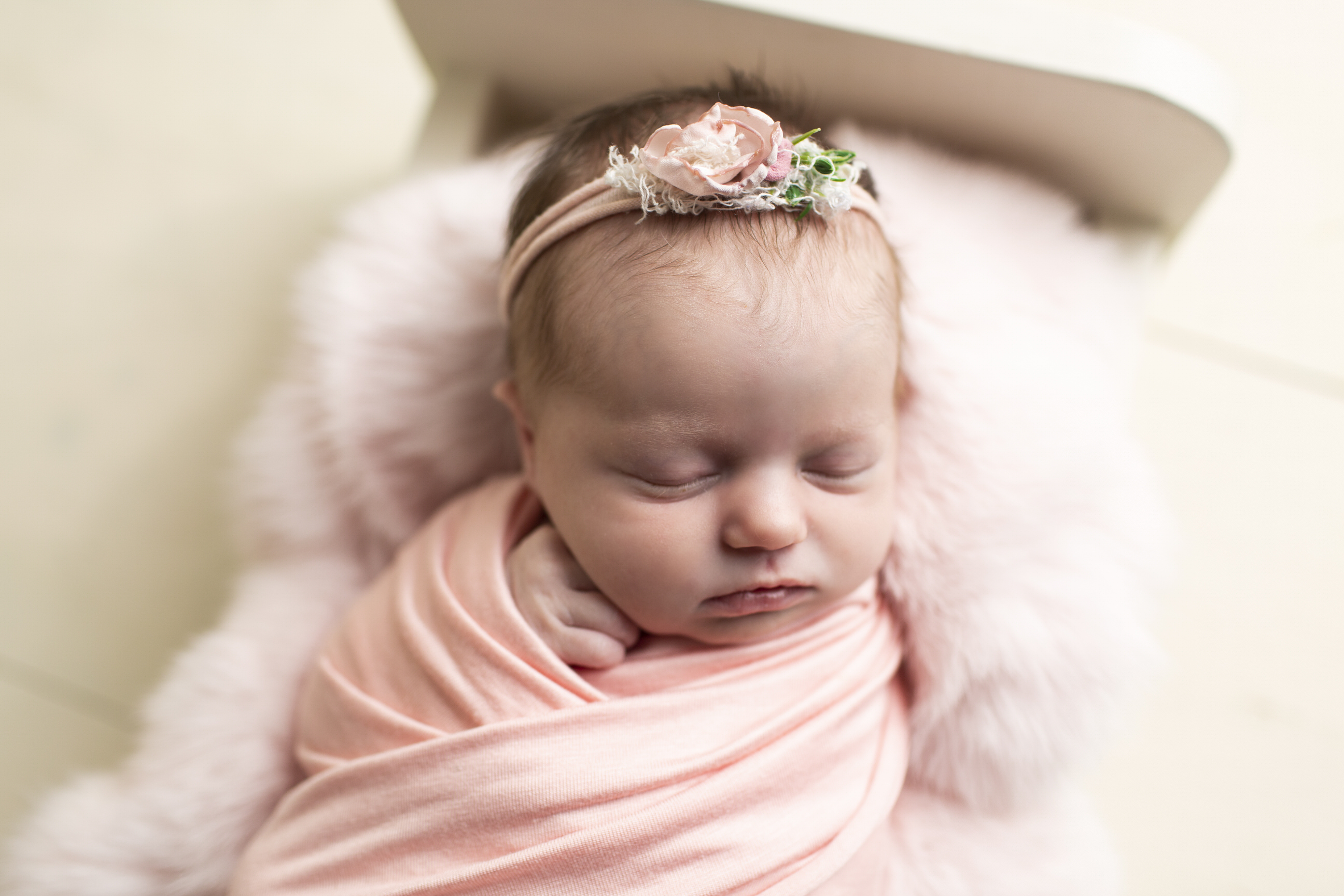 Spring newborn photos