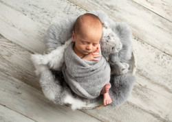 BaNewborn Baby Photos Regaine_36