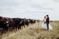 Cupar Wedding Photographer
