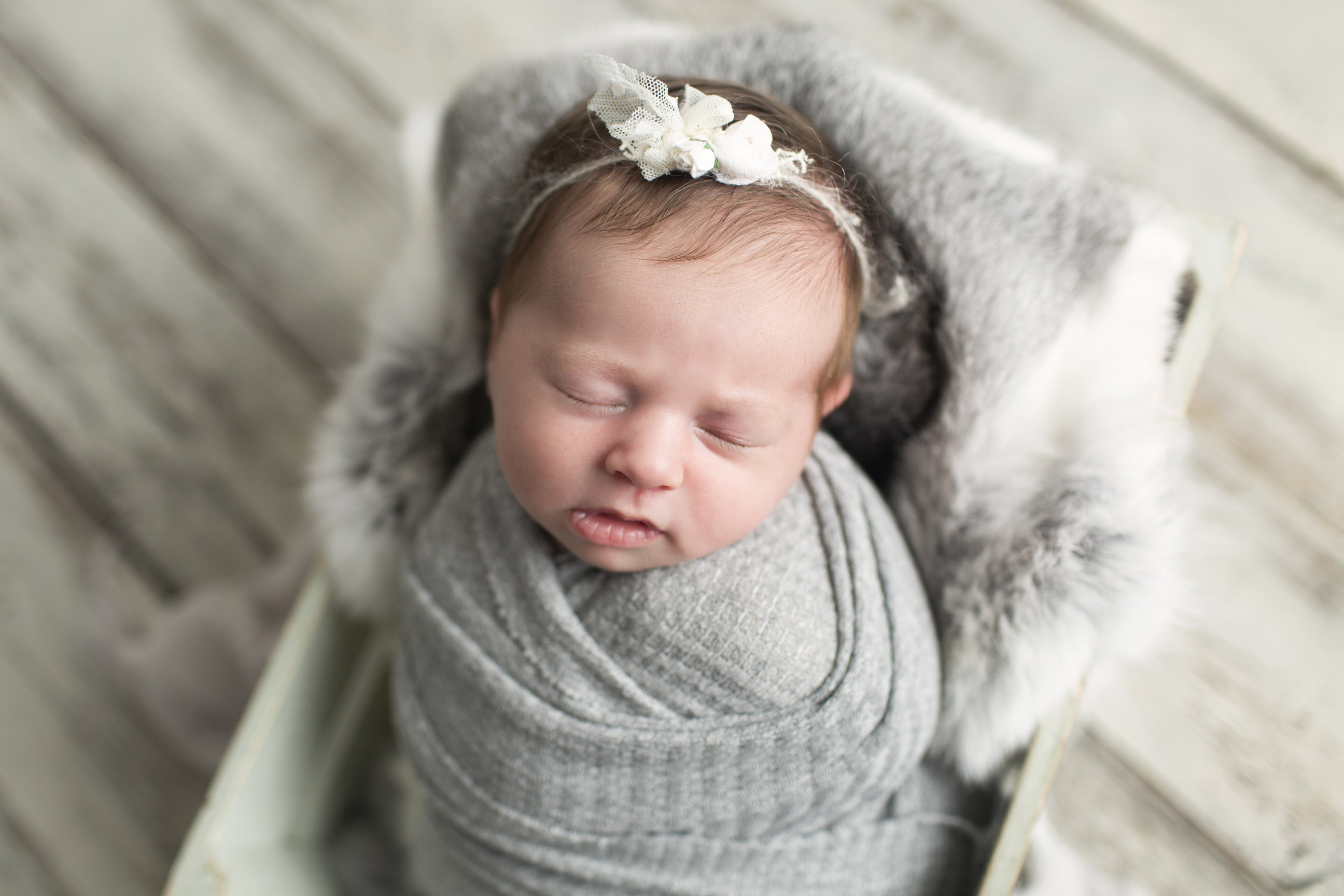 Grey Newborn Photos