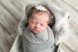Grey Newborn Photos