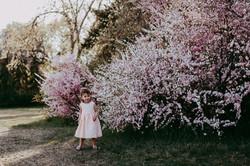 Photos Spring Regina