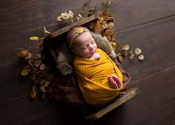 Regina Newborn Baby Photographer